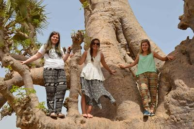 Volunteers from Ireland on a gap year posing in a tree on a day off in Senegal