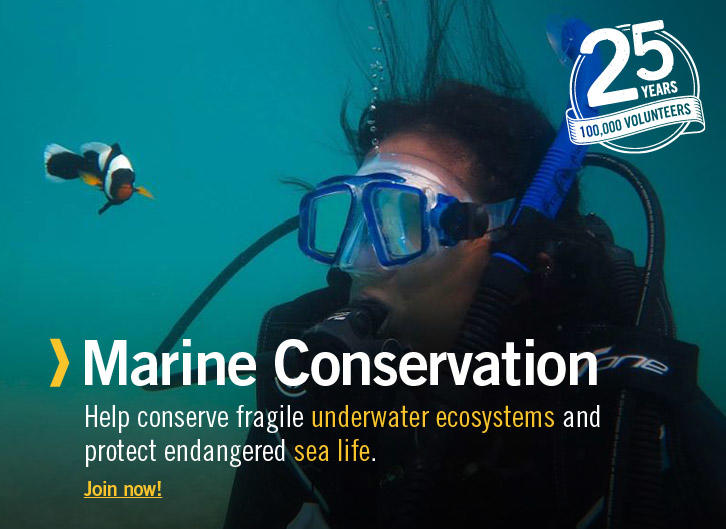 Marine Conservation Volunteering