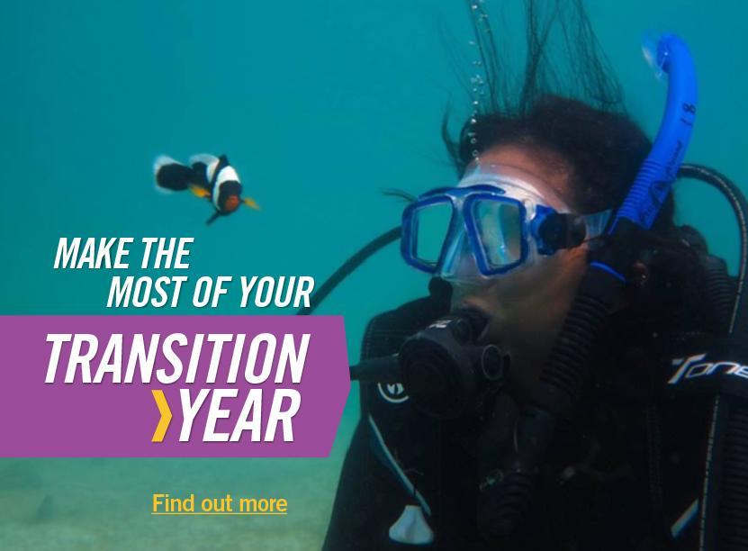 Transition Year