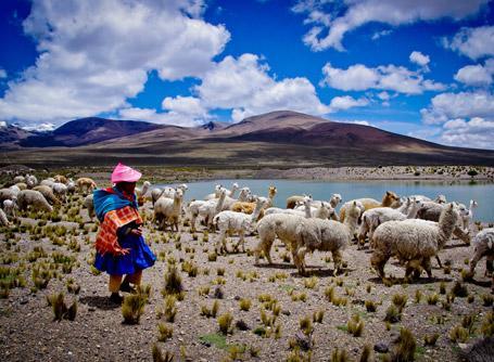 A llama farmer and the beautiful Peruvian landscape