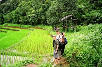 Projects Abroad volunteers in Thailand go hiking