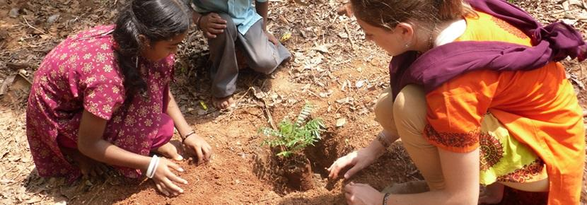 Volunteer on an Agriculture & Farming project