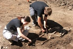 Archaeology volunteers use a delicate brushing technique to uncover bones during their internship in Romania.