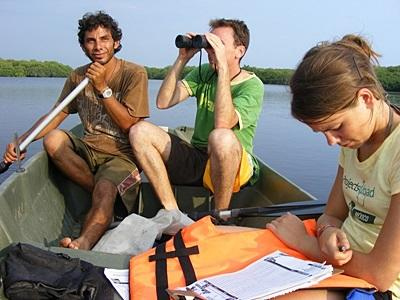Volunteers in Mexico conduct biodiversity survey