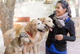 Volunteer Veterinary Medicine