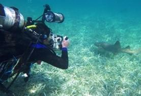 A high school student volunteering in Belize records data about marine life as part of our Conservation & Community placement.