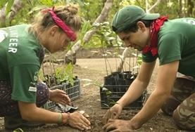 Two High School Special volunteers help with reforestation work as part of their Conservation project in Cost Rica.