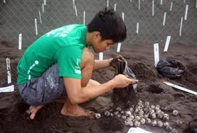A High School Special volunteer buries turtle eggs at the conservation centre of his Conservation & Spanish placement in Mexico.